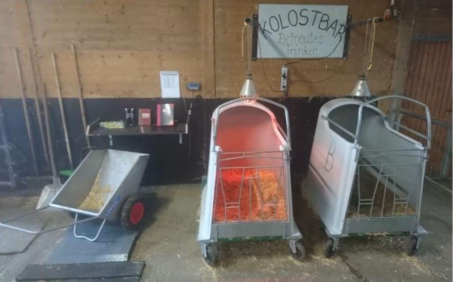 Le Kolostbar sur l'élevageLuchbergmilch, 500 vaches en Allemagne.