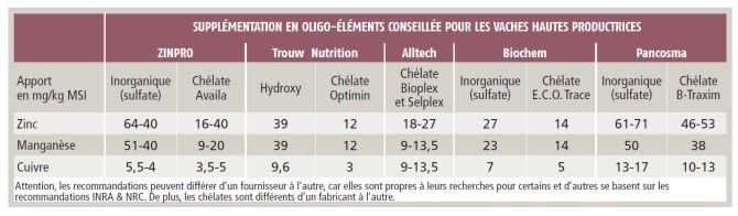 Les recommandations en oligos-éléments pour des vaches hautes productrices