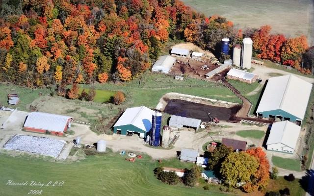 Les coulisses de l'élevage Riverside Dairy, dans le Michigan. 220 vaches chez Bob