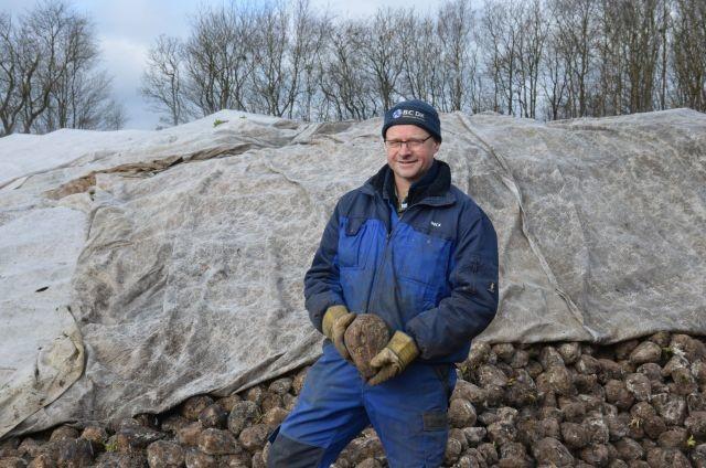 Dirk Millenaar conseille de ne pas dépasser 5 kg de MS de betteraves dans la ration.